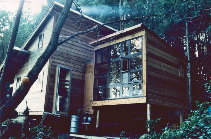 Comparelli Architect - Mudge Island British Columbia - Windows Day External